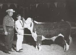 Vintage Livestock Auction